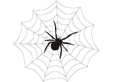 小蜘蛛简笔画可爱